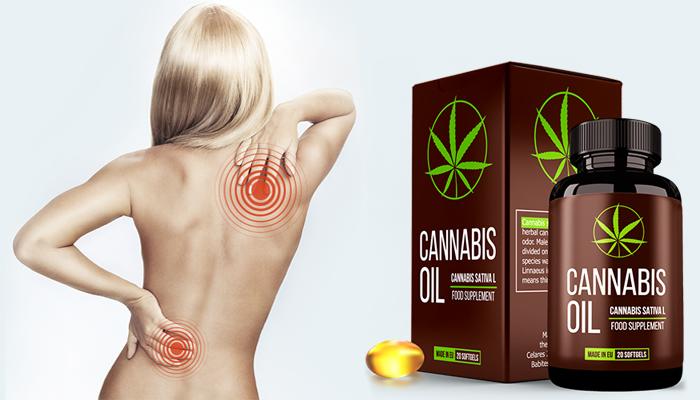 Cannabis Oil: helyreállítja a porc szöveteket és az ízületeket