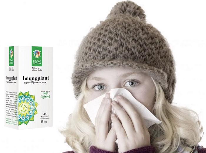 Imunoplant a védettség növelése: védje meg a szervezetet a betegségektől!